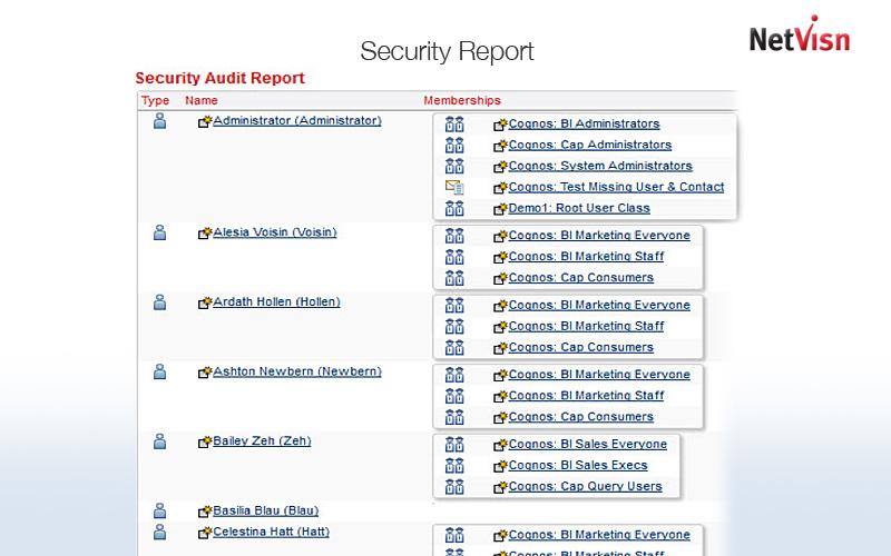 security report screenshot