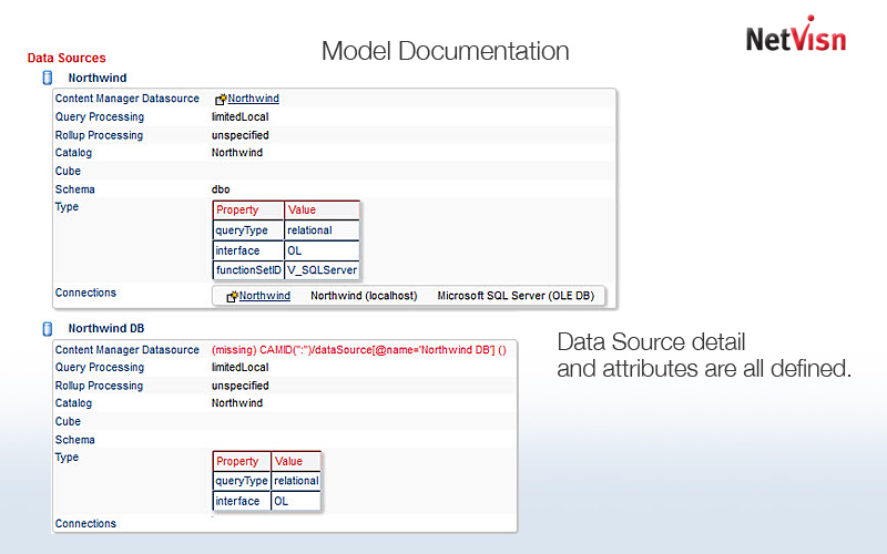 model documentation in netvisn