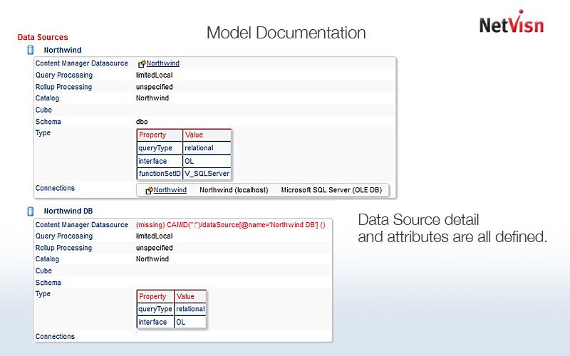 model documentation in netvisn
