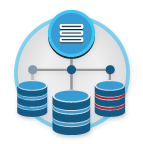cognos data management
