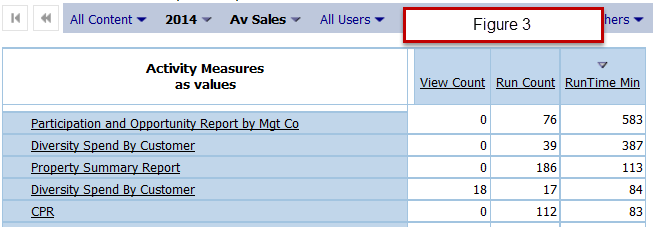 Figure 3 - Reports Run But Never Viewed