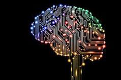 cognos information in brain
